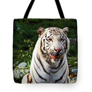 White Bengal Tiger  Tote Bag by Garry Gay