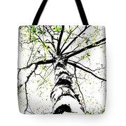 White Birch 2011-1b Tote Bag