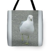 White Bird Of Alberta Tote Bag