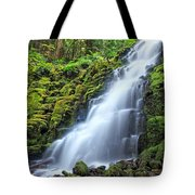 White Branch Falls Tote Bag