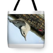 White Breasted Nuthatch At The Suet Feeder Tote Bag