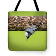 White-breasted Nuthatches Tote Bag