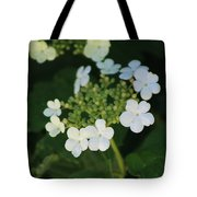 White Bridal Wreath Flowers Tote Bag