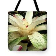 White Bromeliad Tote Bag