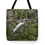 White Cattle Egret Tote Bag
