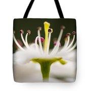White Cherry Blossom Against Green Tote Bag