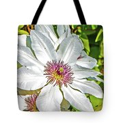 White Clematis Yellow And Purple Throat Tote Bag