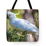 White Cockatoo Tote Bag