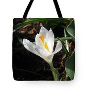 White Crocus Tote Bag