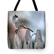 White-crowned Sparrow 2 Tote Bag