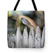 White-crowned Sparrow 3 Tote Bag