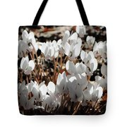 White Cyclamen Tote Bag