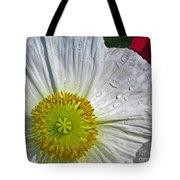 White Daffodil Tote Bag