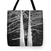 White Dead Trees Tote Bag