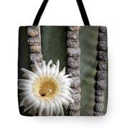 White Desert Jewel Tote Bag