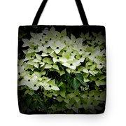 White Dogwood Tote Bag