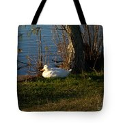 White Duck Resting Tote Bag