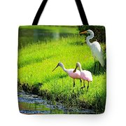 White Egret And Roseate Spoonbills Tote Bag