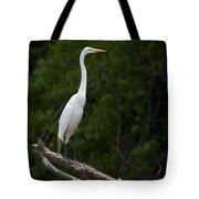 White Egret-signed-#0493 Tote Bag