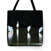 White Egrets Tote Bag