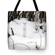 White Ermine Tote Bag