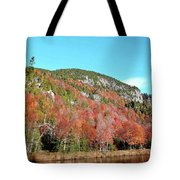 White Face Mt.  Tote Bag