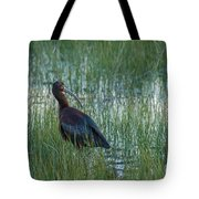 White-faced Ibis In Idaho Tote Bag