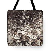 White Flowers 1877 12 3h9 Ivan Ivanovich Shishkin Tote Bag