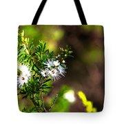 White Flowers Of Kunzea Ambigua Tote Bag