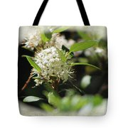 White Flowers On Canvas Tote Bag