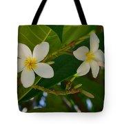 White Frangipani Flowers Tote Bag
