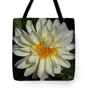 White Gerbera Tote Bag