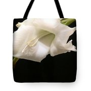 White Gladiolus Tote Bag