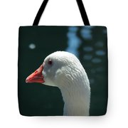 White Goose Sculpted By The Light Tote Bag