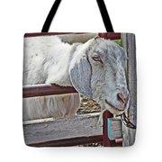 White/grey Goat Head Through Fence 2 6242018 Goat 2420.jpg Tote Bag