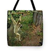 White Handed Gibbon 3 Tote Bag