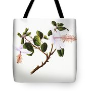 White Hibiscus Art Tote Bag