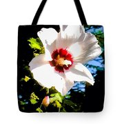White Hibiscus High Above In Shadows Tote Bag