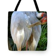 White Ibis At The Zoo Tote Bag