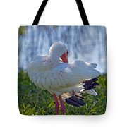 White Ibis Dries Off Tote Bag