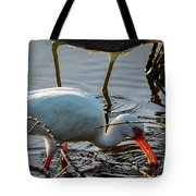 White Ibis Eating Tote Bag