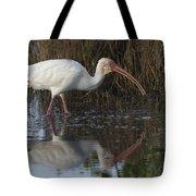 White Ibis Feeding Tote Bag