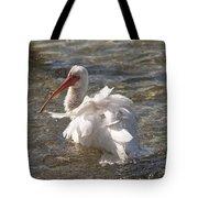 White Ibis In Florida Tote Bag