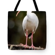 White Ibis Tote Bag
