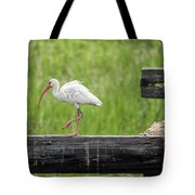 White Ibis Stepping Out Tote Bag