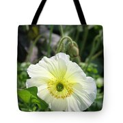 White Iceland Poppy Tote Bag