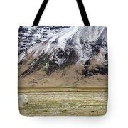 White Icelandic Horse Tote Bag