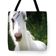 White Indian Pony Tote Bag