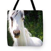 White Indian Pony Tote Bag