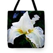 White Iris At Pilgrim Place In Claremont-california Tote Bag